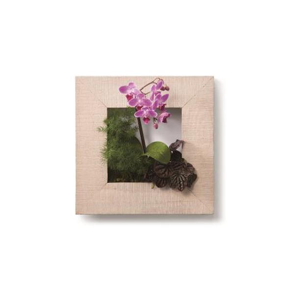 PIANTA×STANZA(ピアンタ・スタンツァ)マイギャラリー・Sサイズ300×300mmホワイトウッド(植物セット:フラワー)