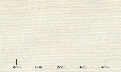 ファーストコレクション ベージュ系 無地 オーダーシャツ 綿35% ポリ65% 3110320005