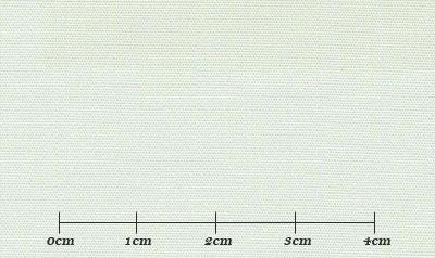 ファーストコレクション グリーン系 無地 オーダーシャツ 綿35% ポリ65% 3110320008