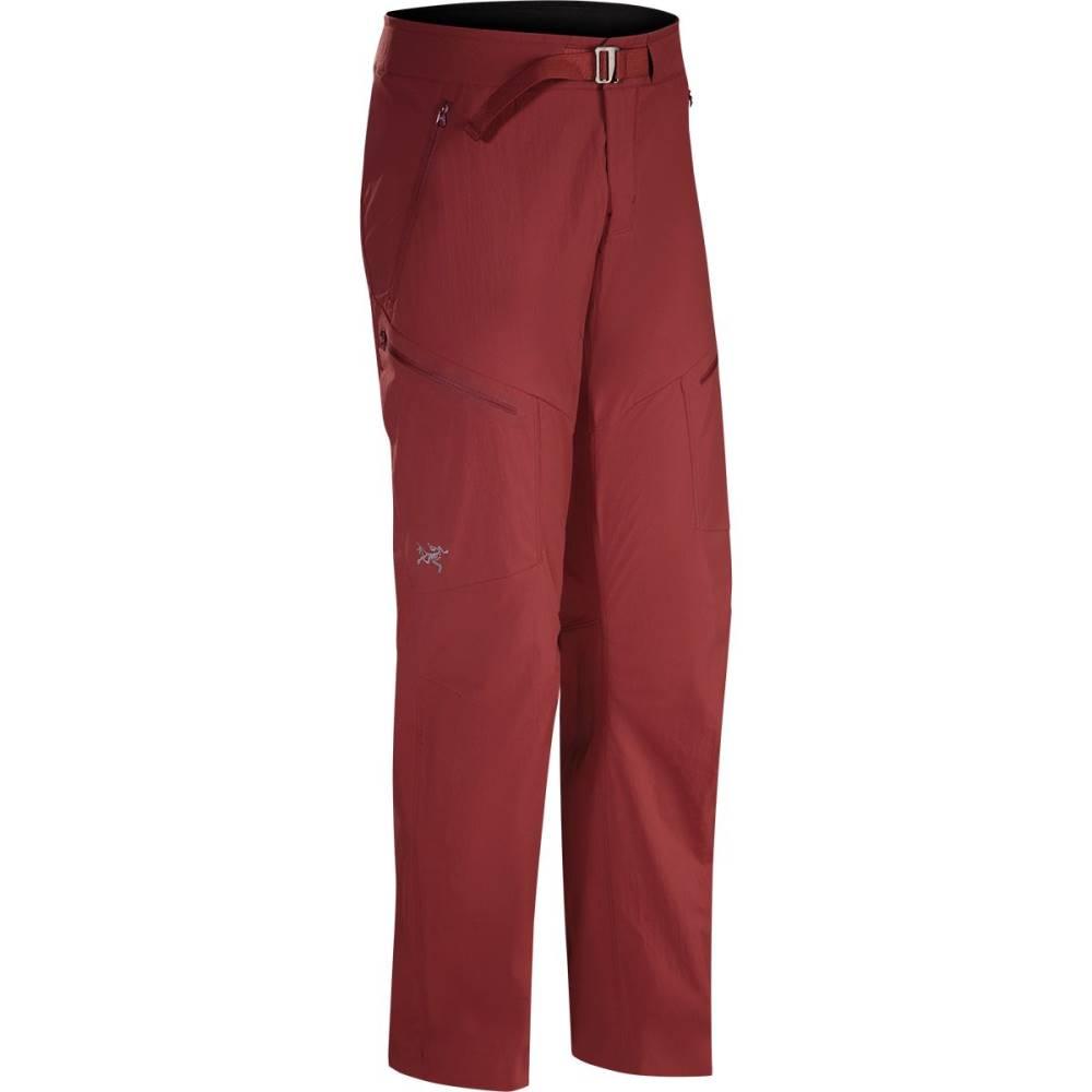 アークテリクス メンズ ハイキング・登山 ボトムス・パンツ【Palisade Pants】Pompeii