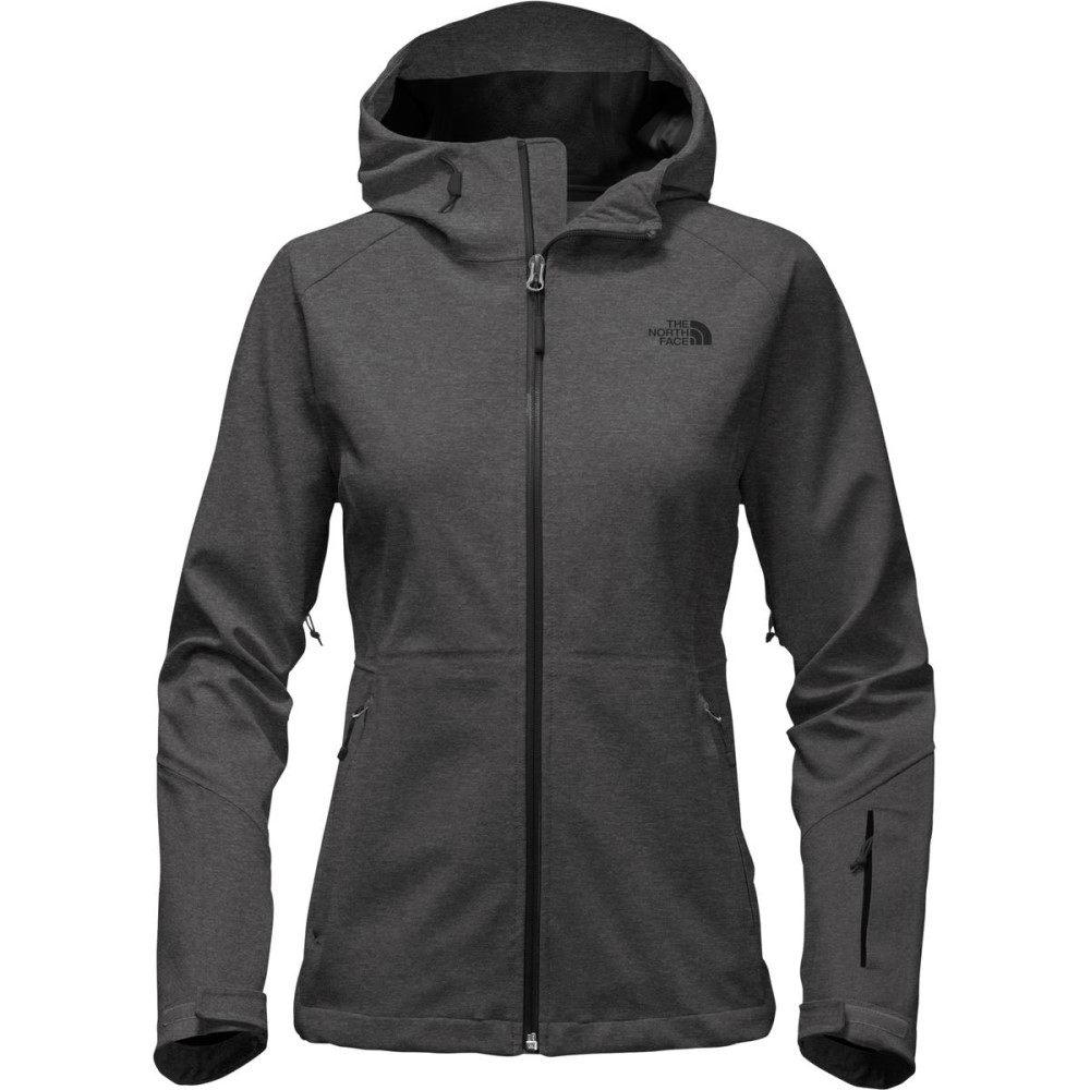 ザ ノースフェイス レディース アウター レインコート【Apex Flex GTX Hooded Jacket】Tnf Dark Grey Heather