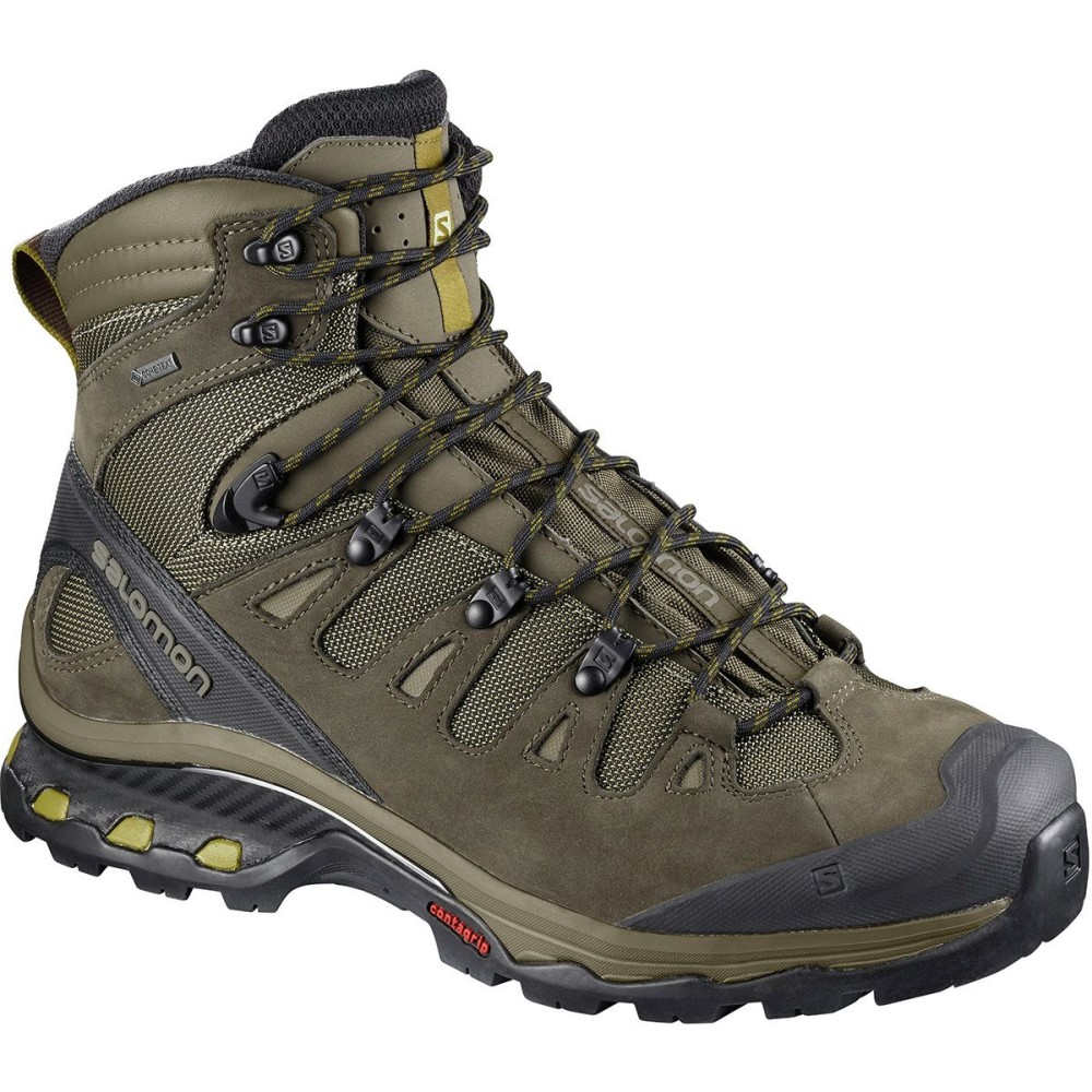 サロモン メンズ ハイキング・登山 シューズ・靴【Quest 4D 3 GTX Backpacking Boots】Wren/Bungee Cord/Green Sulphur
