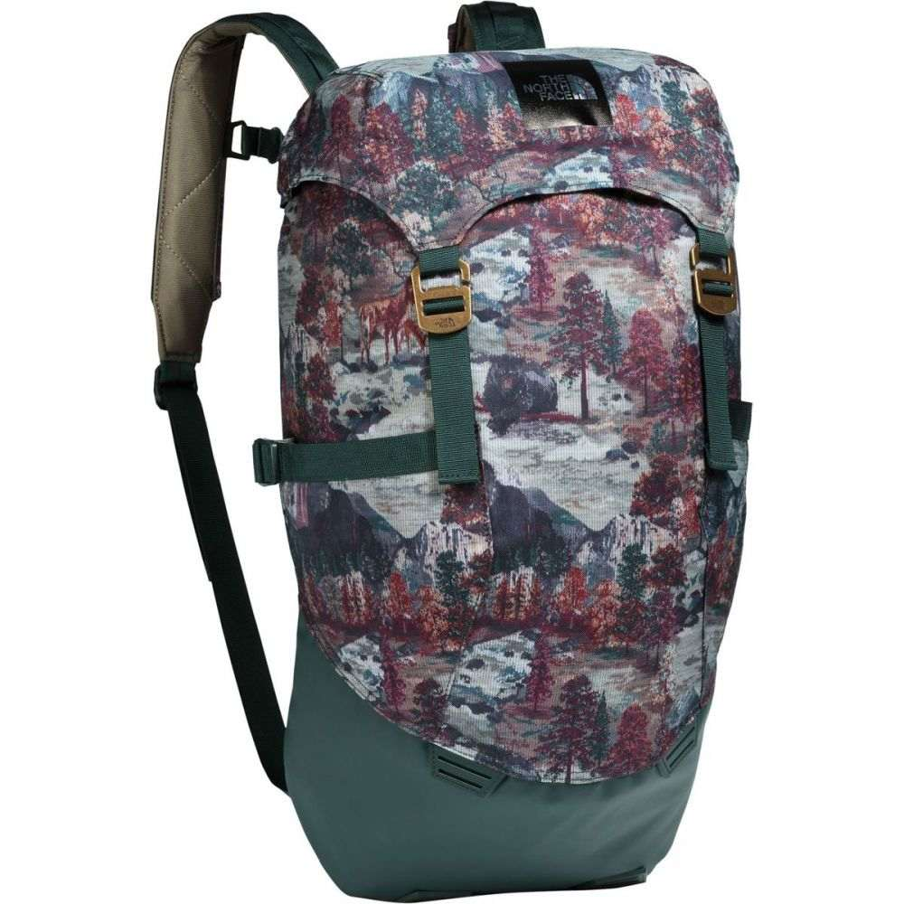 ザ ノースフェイス レディース バッグ バックパック・リュック【Homestead Roadtripper 30L Backpack】Darkest Spruce Yosemite Sofa Print/Darkest Spruce