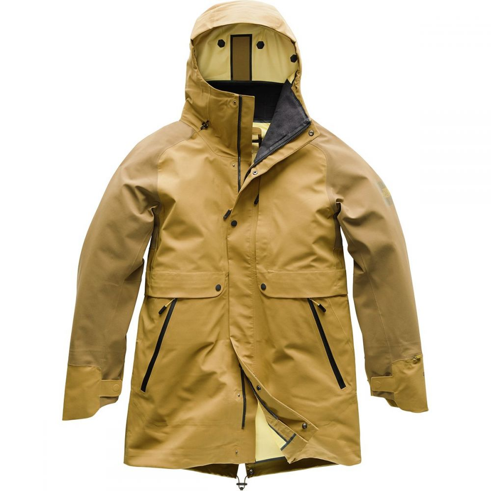 ザ ノースフェイス The North Face メンズ アウター レインコート【Cryos 3L Big E Mac GTX Jackets】Bronze Mist/Plantation Green