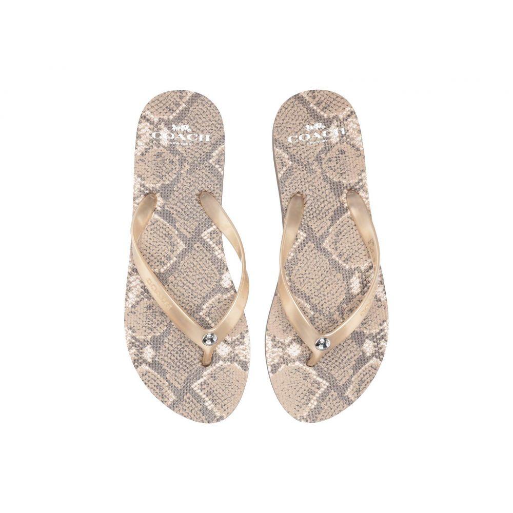 コーチ COACH レディース シューズ・靴 ビーチサンダル【Flip-Flop】Natural