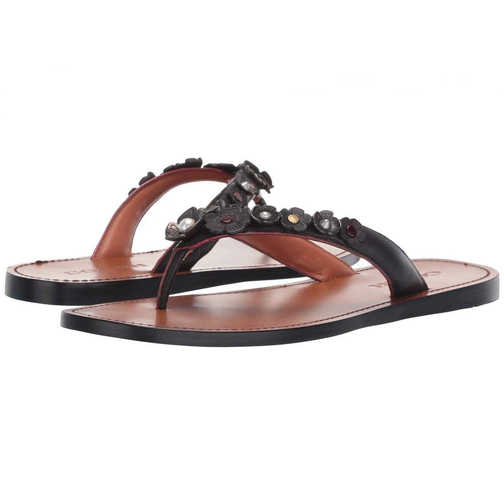 コーチ COACH レディース シューズ・靴 ビーチサンダル【Tea Rose Multi Thong Sandal - Leather】Black