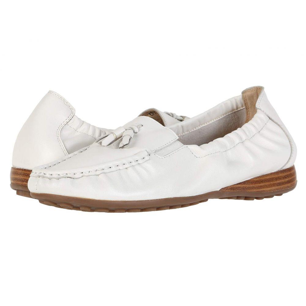 デイビッド テイト David Tate レディース シューズ・靴【Hypnotic】White