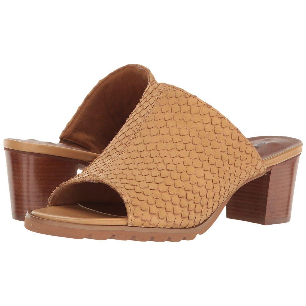 ウォーキング クレードル Walking Cradles レディース サンダル・ミュール シューズ・靴【Nia】Camel Cut Snake Print Leather
