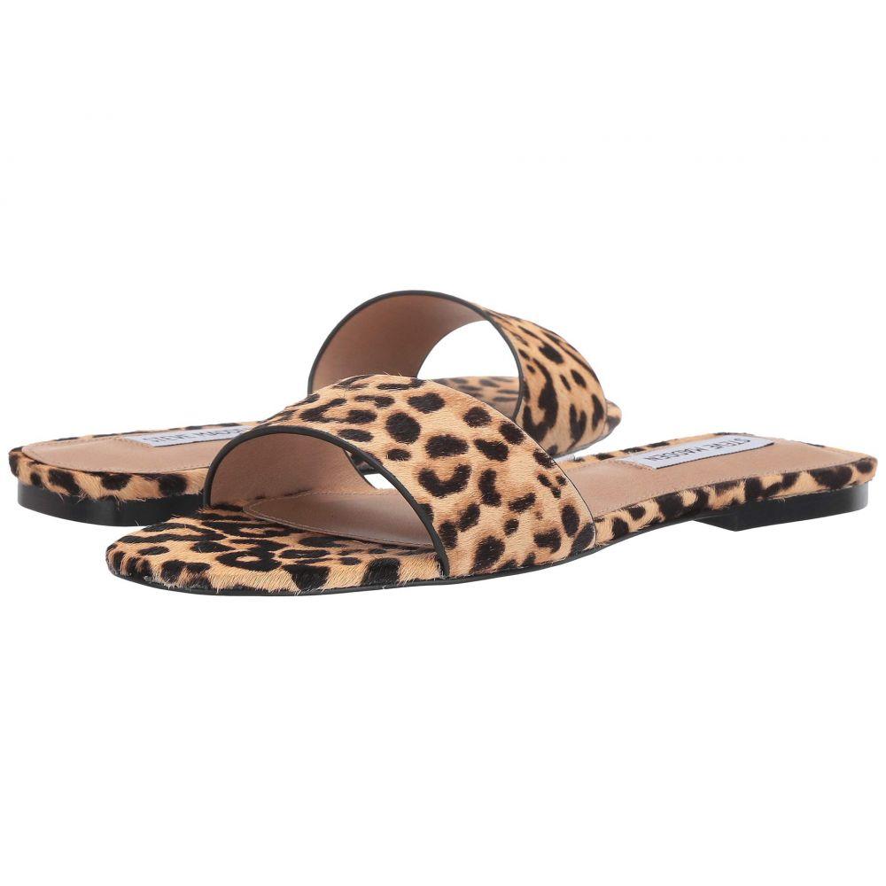 スティーブ マデン Steve Madden レディース サンダル・ミュール フラット シューズ・靴【Bev Flat Sandal】Leopard