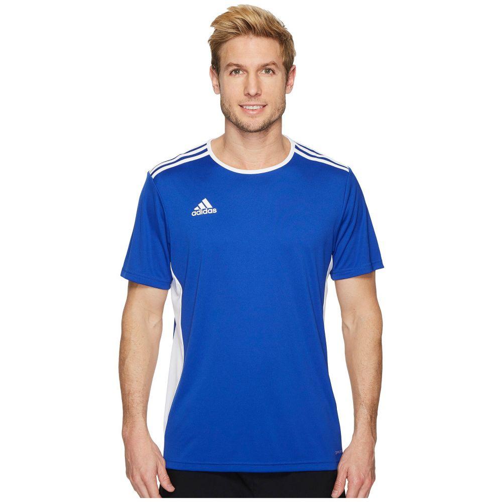 アディダス adidas メンズ Tシャツ トップス【Entrada 18 Jersey】Bold Blue/White