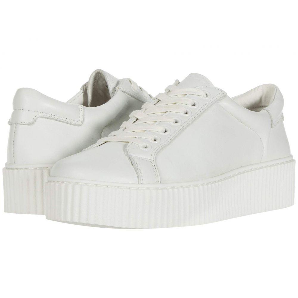 スティーブ マデン Steve Madden レディース スニーカー シューズ・靴【Casey】White Leather