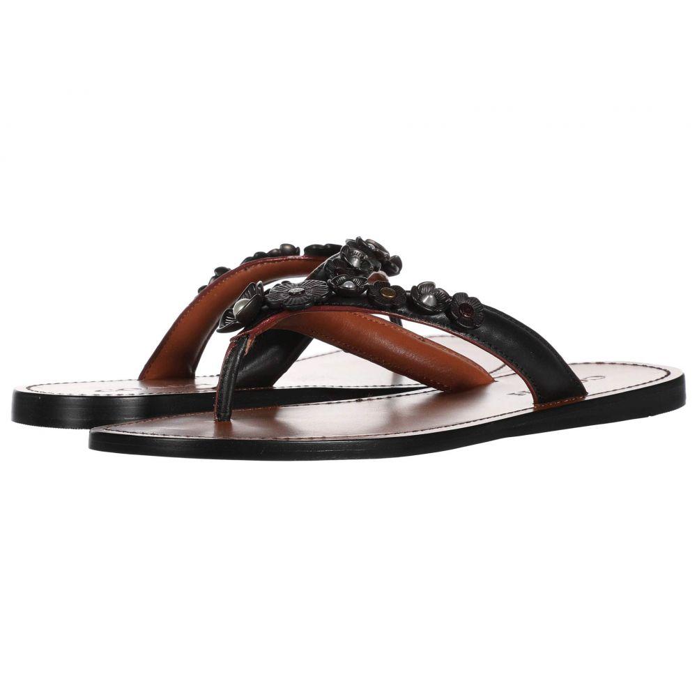 コーチ COACH レディース ビーチサンダル トングサンダル シューズ・靴【Tea Rose Multi Thong Sandal】Black Leather