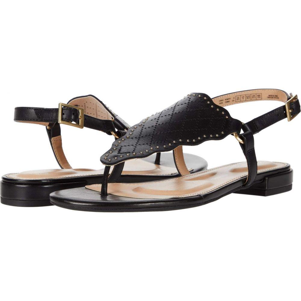 ロックポート Rockport レディース サンダル・ミュール シューズ・靴【Total Motion Zosia Wave Thong】Black