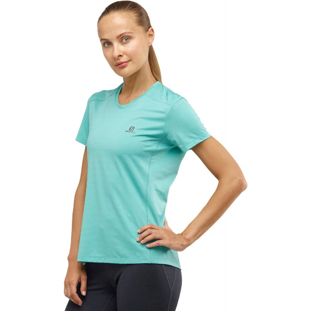 サロモン Salomon レディース フィットネス・トレーニング Tシャツ トップス【XA Training T-Shirt】Meadowbrook/Heather