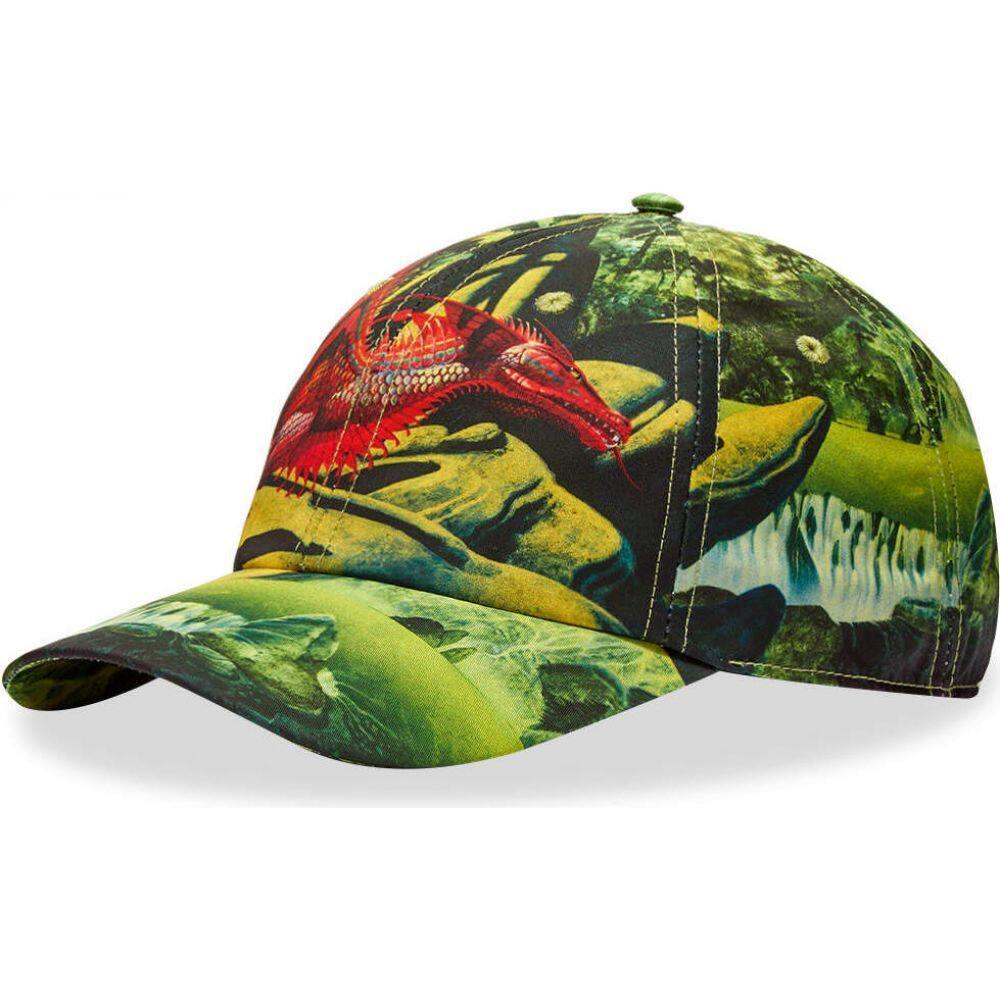 ヴァレンティノ Valentino メンズ キャップ ベースボールキャップ 帽子【x Roger Dean Dragon Baseball Cap】Green/Red