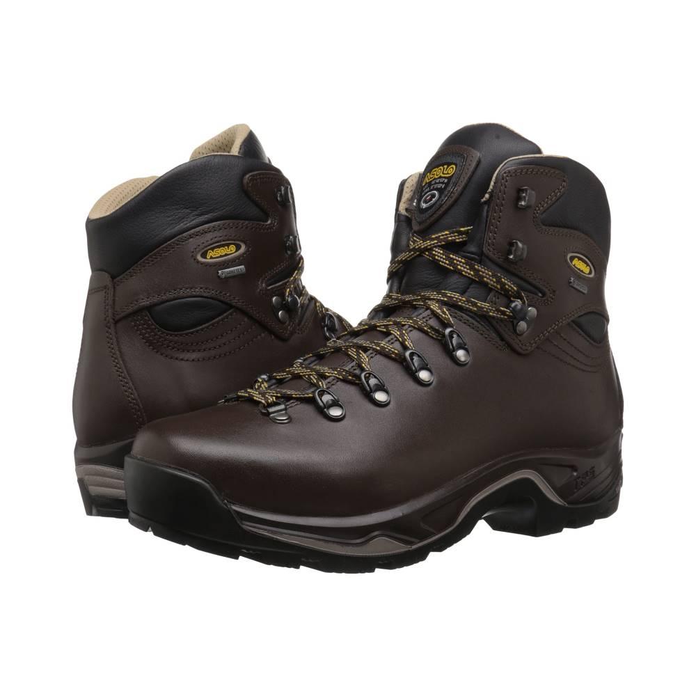 アゾロ メンズ ハイキング・登山 シューズ・靴【TPS 520 GV EVO】Chestnut