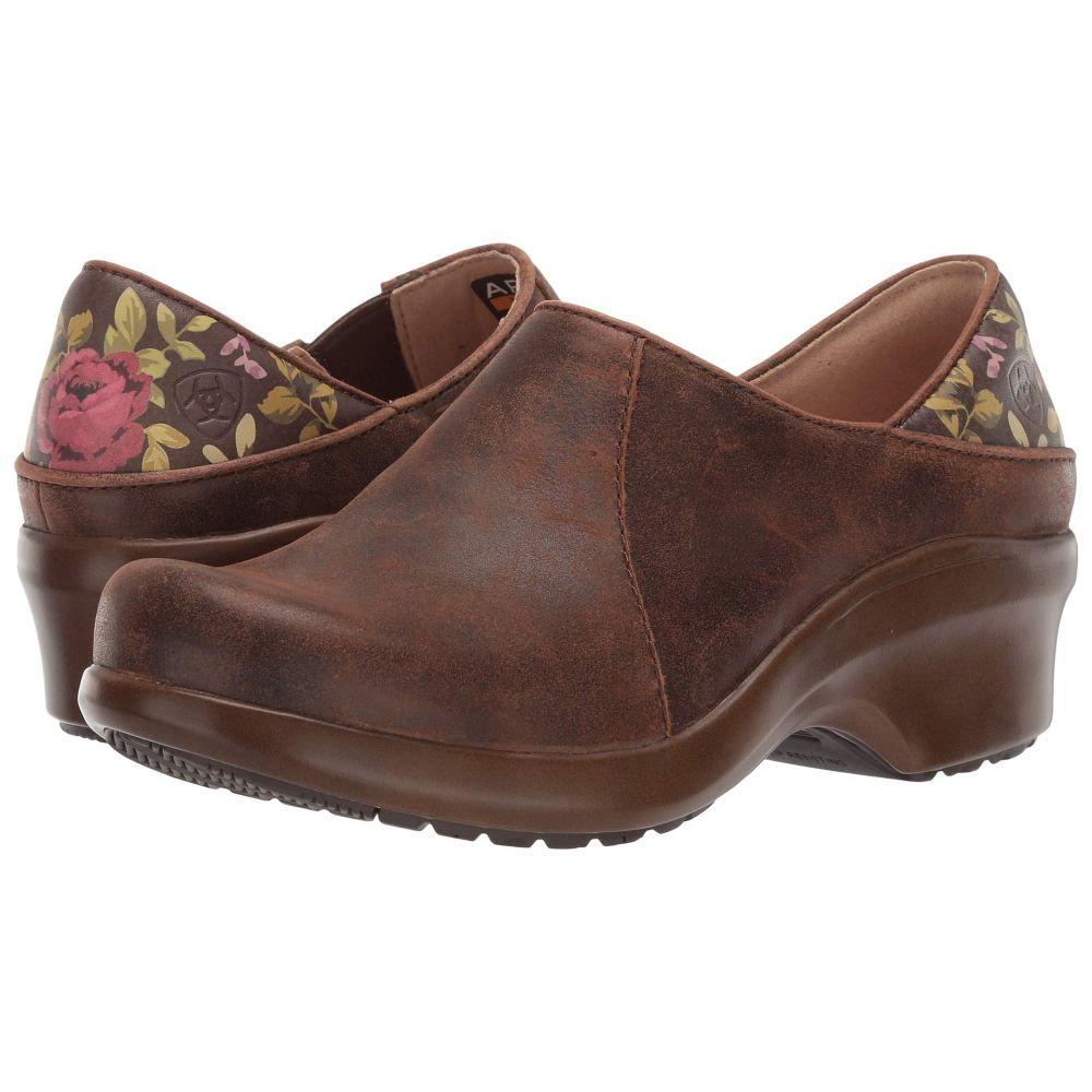アリアト Ariat レディース シューズ・靴 クロッグ【Hera Expert Clog】Antique Brown