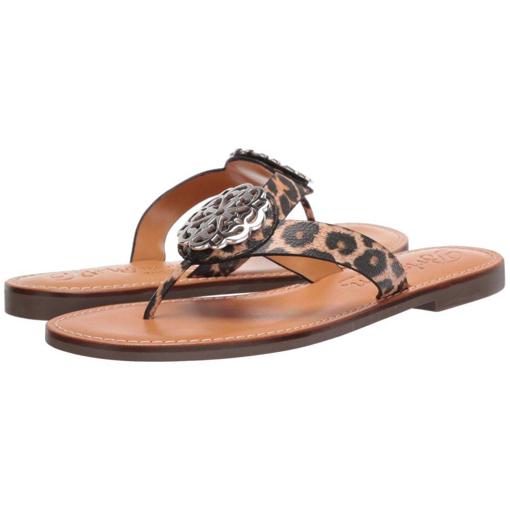 ブライトン Brighton レディース ビーチサンダル シューズ・靴【Alice】Leopard Buffalo