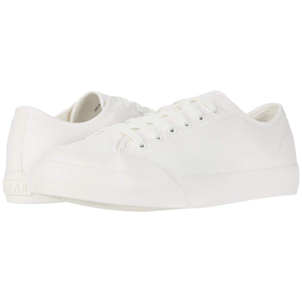 ドルチェヴィータ Dolce Vita レディース スニーカー シューズ・靴【Bryton】White Eco Canvas