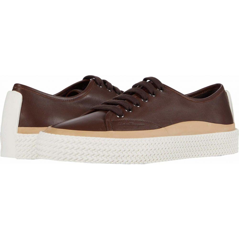 サルヴァトーレ フェラガモ Salvatore Ferragamo メンズ スニーカー シューズ・靴【Storm Sneaker】Chocolate