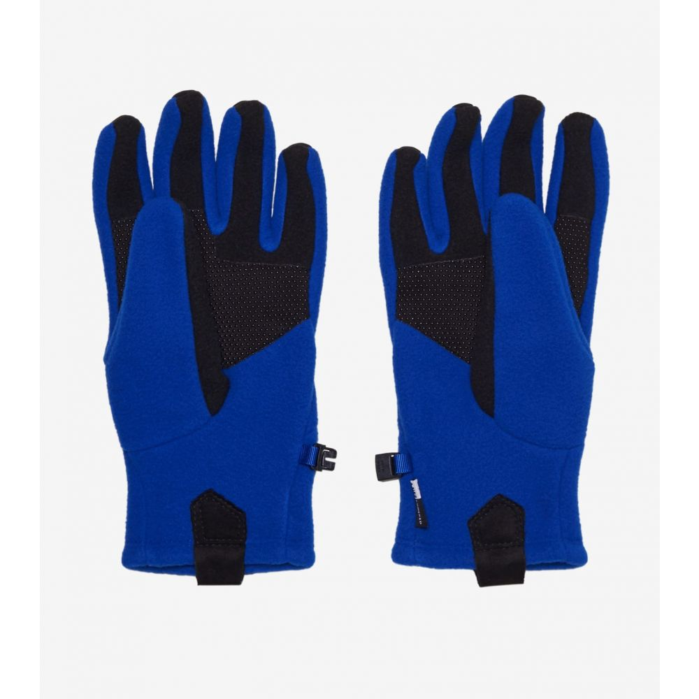 ザ ノースフェイス The North Face メンズ 手袋・グローブ 【Denali Etip Glove】Blue