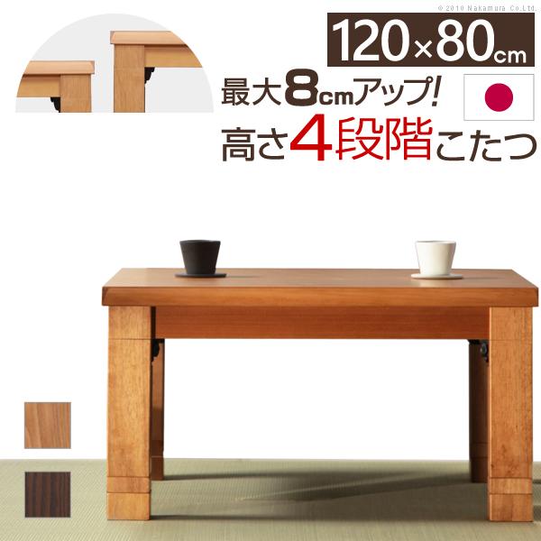 こたつ 長方形 日本製『4段階高さ調節折れ脚こたつ カクタス 120×80cm』国産折りたたみコタツ炬燵