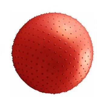 触覚ボール [分類:フィットネス](JS23660/D-5459)