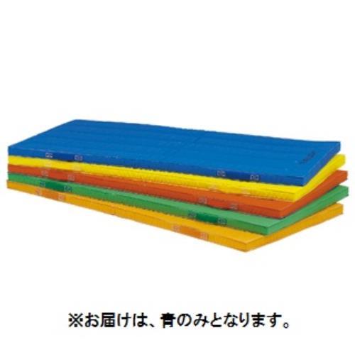 エコカラーコンビネーションマット5cm厚 120×240×5cm 青 T-1893B (TOL10317800)【送料区分:9】