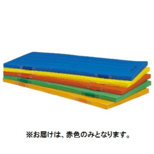 エコカラーコンビネーションマット5cm厚 120×240×5cm 赤 T-1893R (TOL10317802)【送料区分:9】