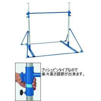 三和体育 スポーツ用具 学校用具 簡易式低鉄棒 DX型(屋内外兼用) S-8570 特殊送料【ランク:D】 【SWT】 【QCA25】