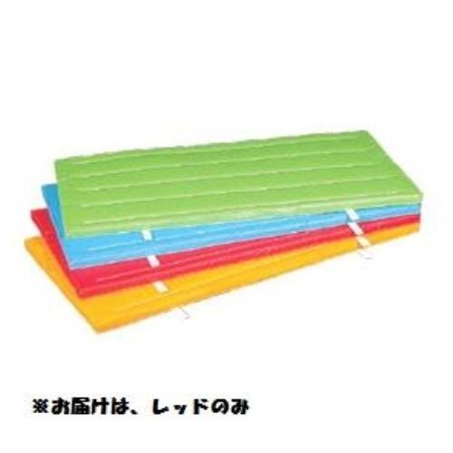室内外兼用防水カラ-マット (レッド) 120×300×5 S-9683 (SWT10323232)【送料区分:E】
