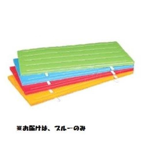 室内外兼用防水カラ-マット (ブル-) 120×240×5 S-9687 (SWT10323236)【送料区分:D】