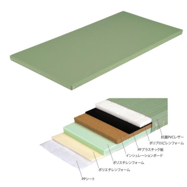 柔道用畳AR EKR007-100 (ENW10390932)【送料区分:2G】