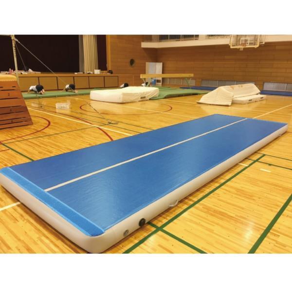 S-9583 エアマット 標準仕様 t10cm 120cm×600cm (SWT10576373) 送料【お見積】【 三和体育 】