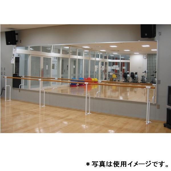 スポーツミラー 固定式壁面用リフェクスミラー90D-5230 特殊送料:ランク【別途】【DAN】【QCA04】
