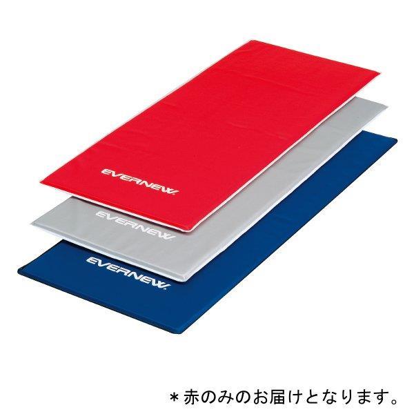 エクササイズマット150DX 赤 (ENW231662/ETB250-100)【QBJ38】