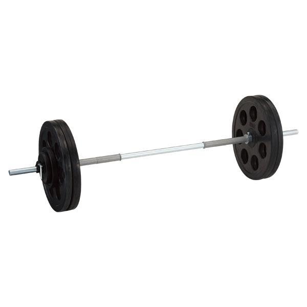 穴付ラバーバーベル28 60kg D5005 (DAN235947)【送料区分:L-1】【QBI35】