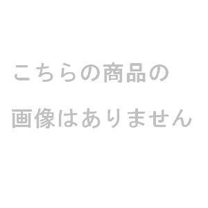 JRサッカーネット普及タイプ (JS39128/B-7170)【分類:サッカー フットサル 試合用品ゴール】【QBI35】
