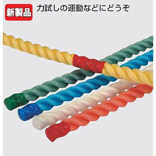 運動遊びロープ(白、赤、黄、緑、青5色の各色1本1組) (JS83181/EKA423)【分類:運動会】【QCA04】