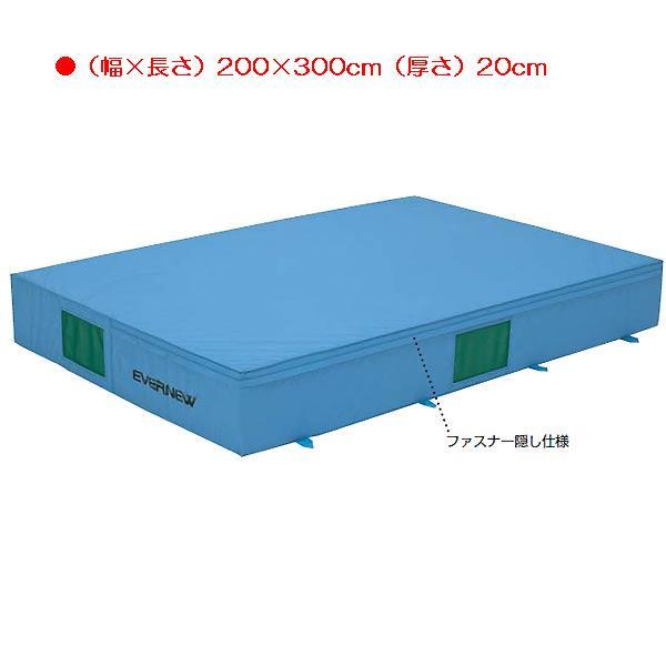 屋内カラーエバーマット(枚)マット本体 EGD202 (JS83521)【送料区分:R】【QBI35】
