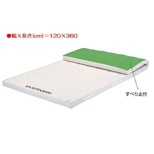 日本最大のブランド 5cm厚合成スポンジマットすべり止付(枚) EKM284 (JS83678)【送料区分:E EKM284】, 人気ブランド:22aa90db --- clftranspo.dominiotemporario.com
