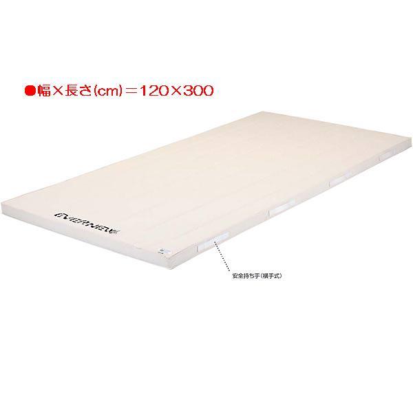 5cm厚合成スポンジコンビマット(枚) EKM323 (JS83732)【送料区分:E】