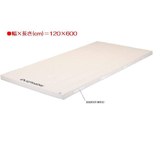 5cm厚合成スポンジコンビマット(枚) EKM325 (JS83736)【送料区分:F】