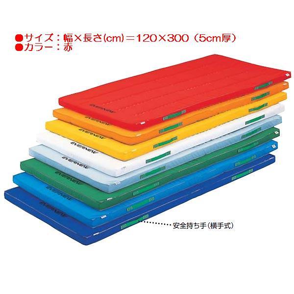 防ダニカラーペットマットすべり止付(枚)(赤) EKM083 (JS83890)【送料区分:E】【QBI35】