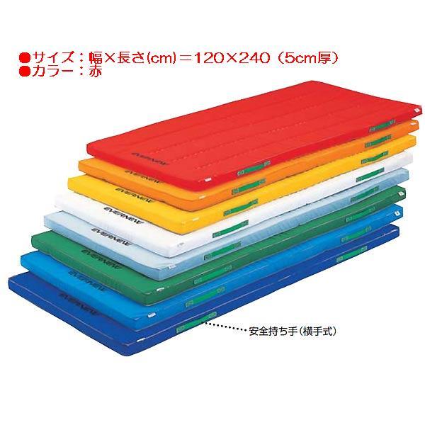 カラーペットマット(枚)(赤) EKM042 (JS83906)【送料区分:D】【QBI35】