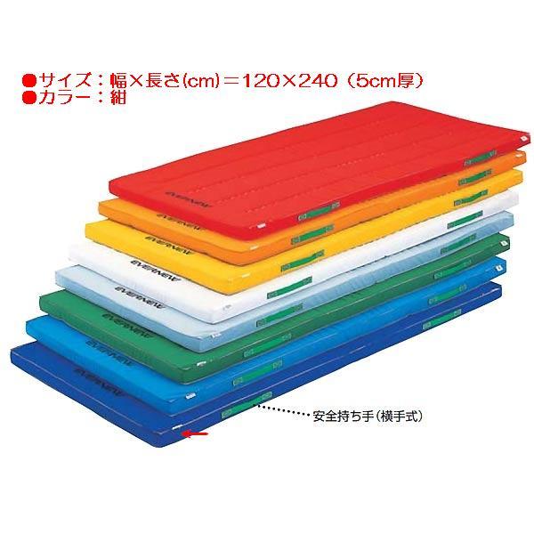 カラーペットマットすべり止付(枚)(紺) EKM047 (JS83937)【送料区分:D】