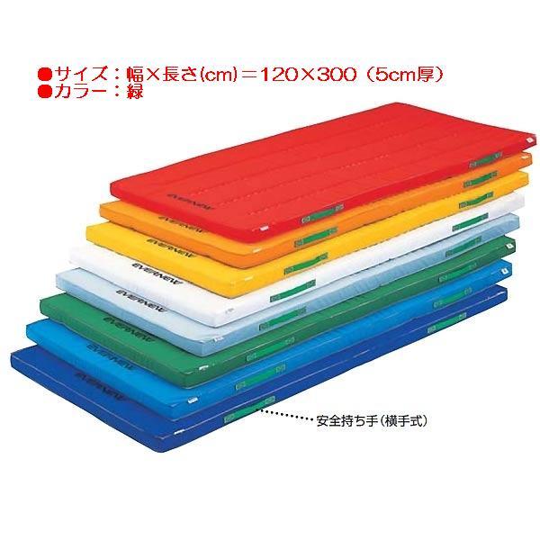 カラーペットマットすべり止付(枚)(緑) EKM048 (JS83943)【送料区分:E】【QBI35】