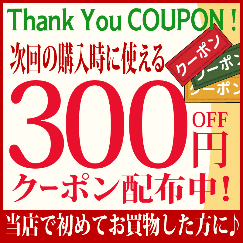 【300円引クーポン配布】三晃商会 小動物用木製ハウス とびばこハウス