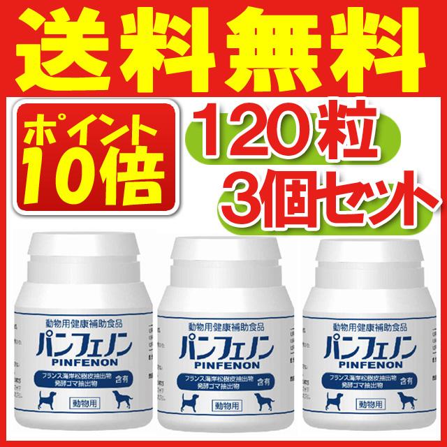 パンフェノン 120粒×3個セット【送料無料】(沖縄・離島は別途送料525円です)