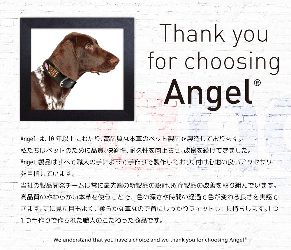 【Angel】Braided LEASH 72インチ w1 リード 犬 本革 真鍮 アルゼンチン牛革 小型 子犬 大型 中型 高級 おしゃれ シンプル 錆びにくい